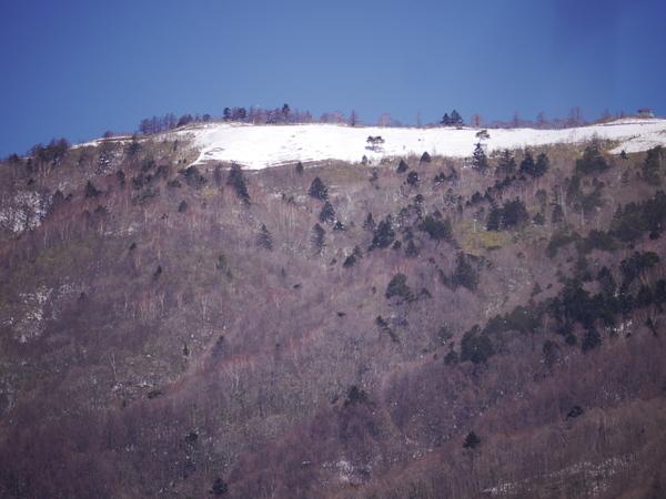 2月20日(火)の高嶺