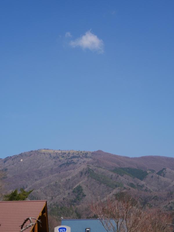 3月30日(金)の高嶺
