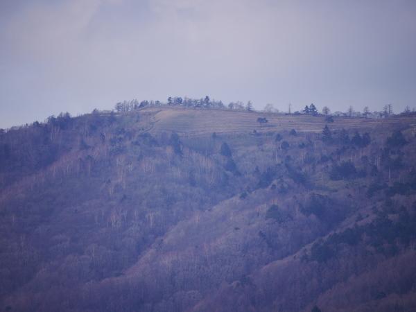 3月15日(木)の高嶺