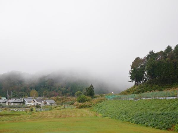 10月12日(金)の高嶺