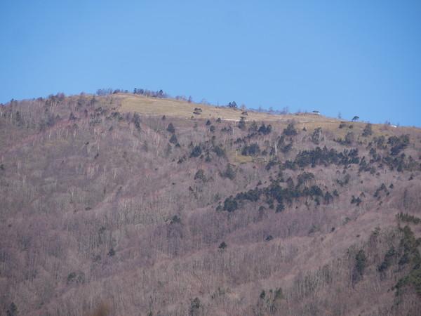 1月3日(木)の高嶺
