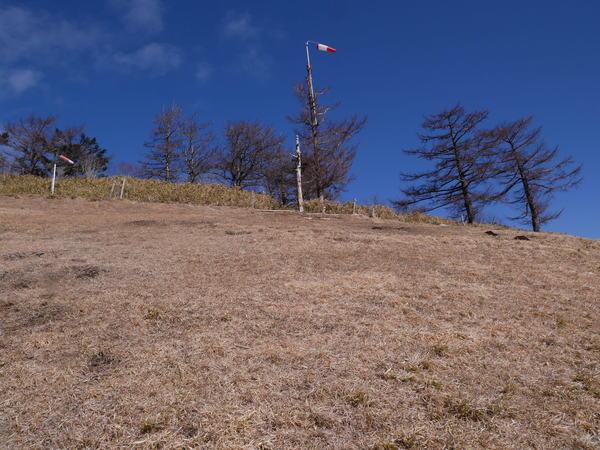2月20日(水)の高嶺