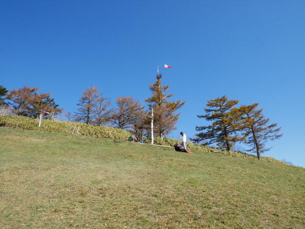 11月6日(水)の高嶺