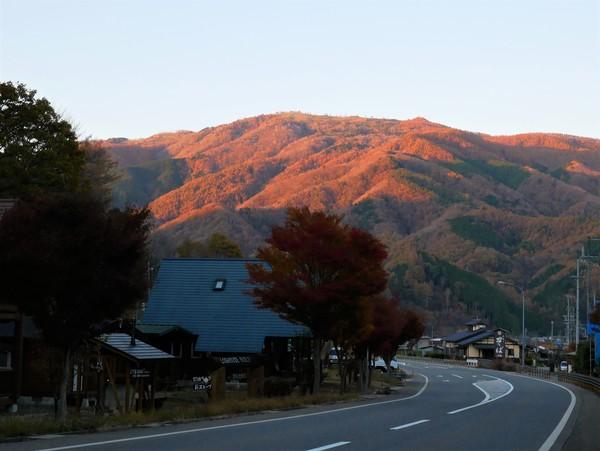 11月12日(火)の高嶺