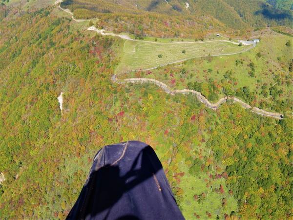 10月21日(水)の高嶺
