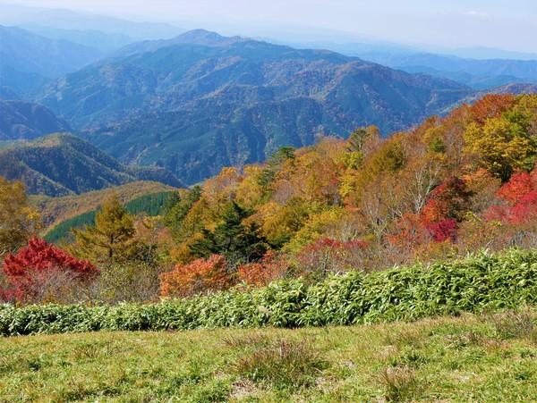 10月29日(木)の高嶺